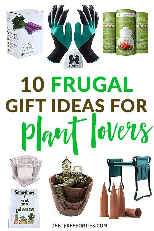 10 frugal gift ideas for plant lovers