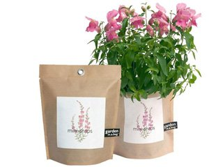 snapdragons growing in a bag